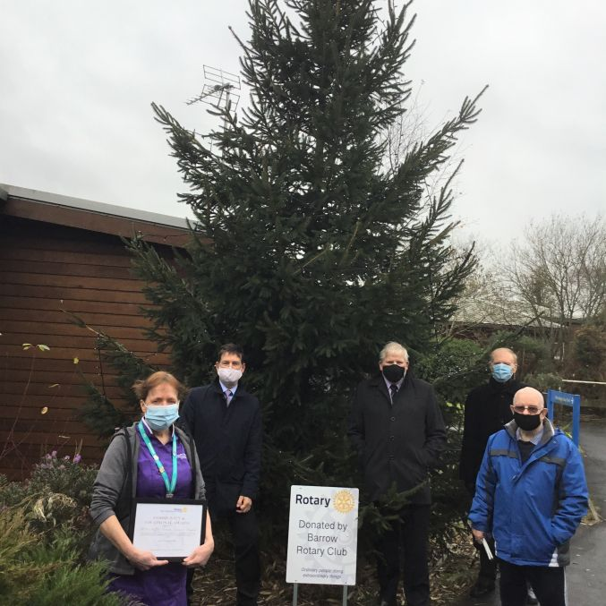 Barrow Rotary Club Donated Christmas Tree UHMBT.jpg